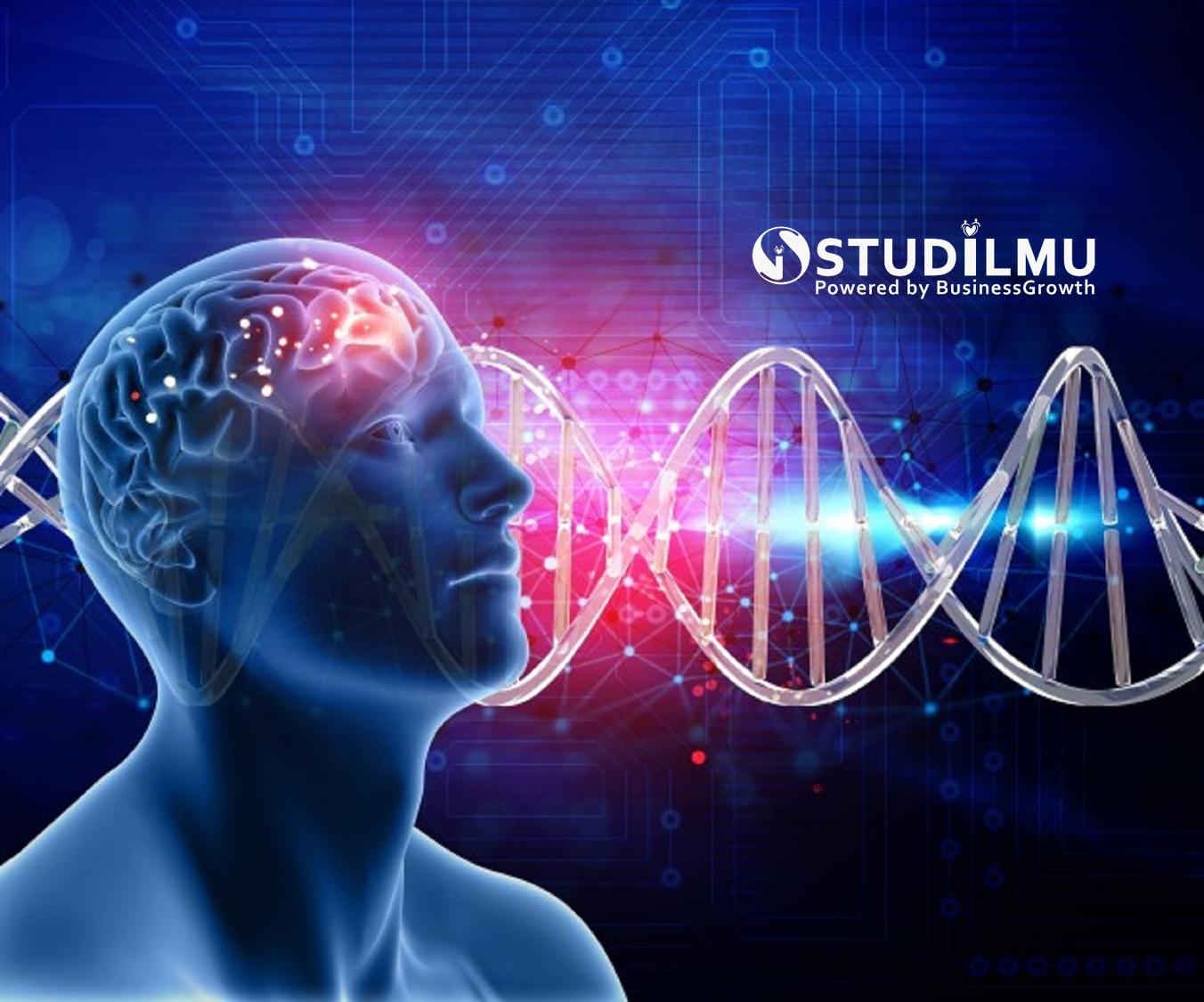 STUDILMU Career Advice - 5 Mitos Otak Kanan dan Otak Kiri