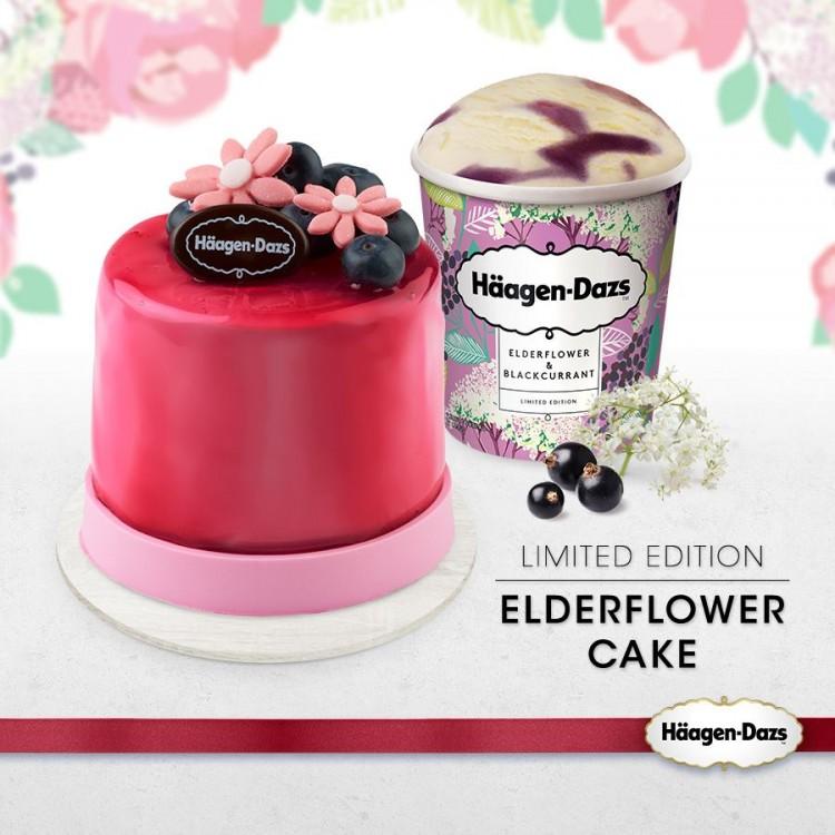 Hagendaz Ice Cream Cake