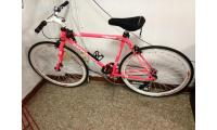WTS Pink Flurry Fixie bike!! S$150