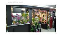 Flowers online shop Singapore