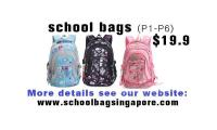 School bags only $19.9 for primary school students