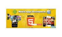 .net application development  singapore