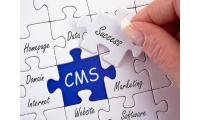 Recruit top CMS developers at pocket-friendly prices