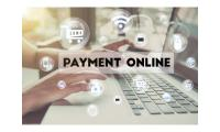 Facilitate online payments on your site with payment portal solutions