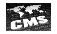 Selecting The Right CMS for Your Business with Openwave's Assistance