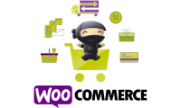 Woocommerce is the Best WordPress Plugin for your E-commerce. Hire Developers.