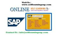 Self Learning SAP Online Videos are offered Self Learning sap is a Leading IT Online Videos Center
