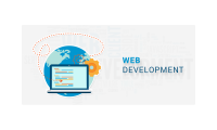Website Development Service Provided by Qdexi Technology