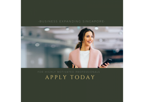 Business Opportunity Expanding Singaore 2019