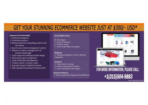 Get Your Stunning eCommerce Website Just at $300/- USD*