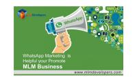 Whatsapp Marketing is Helpful for Promote MLM Business
