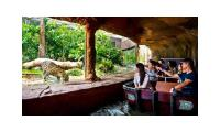 River Safari cheap ticket discount Boat ride Amazon boat Panda view Zoo Bird Park Night Safari