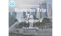 CDN Solutions Group on a Business Trip to Singapore