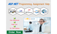 ASP.Net Programming Assignment Help from Casestudyhelp.Com Experts