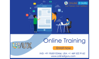 ui online training hyderabad