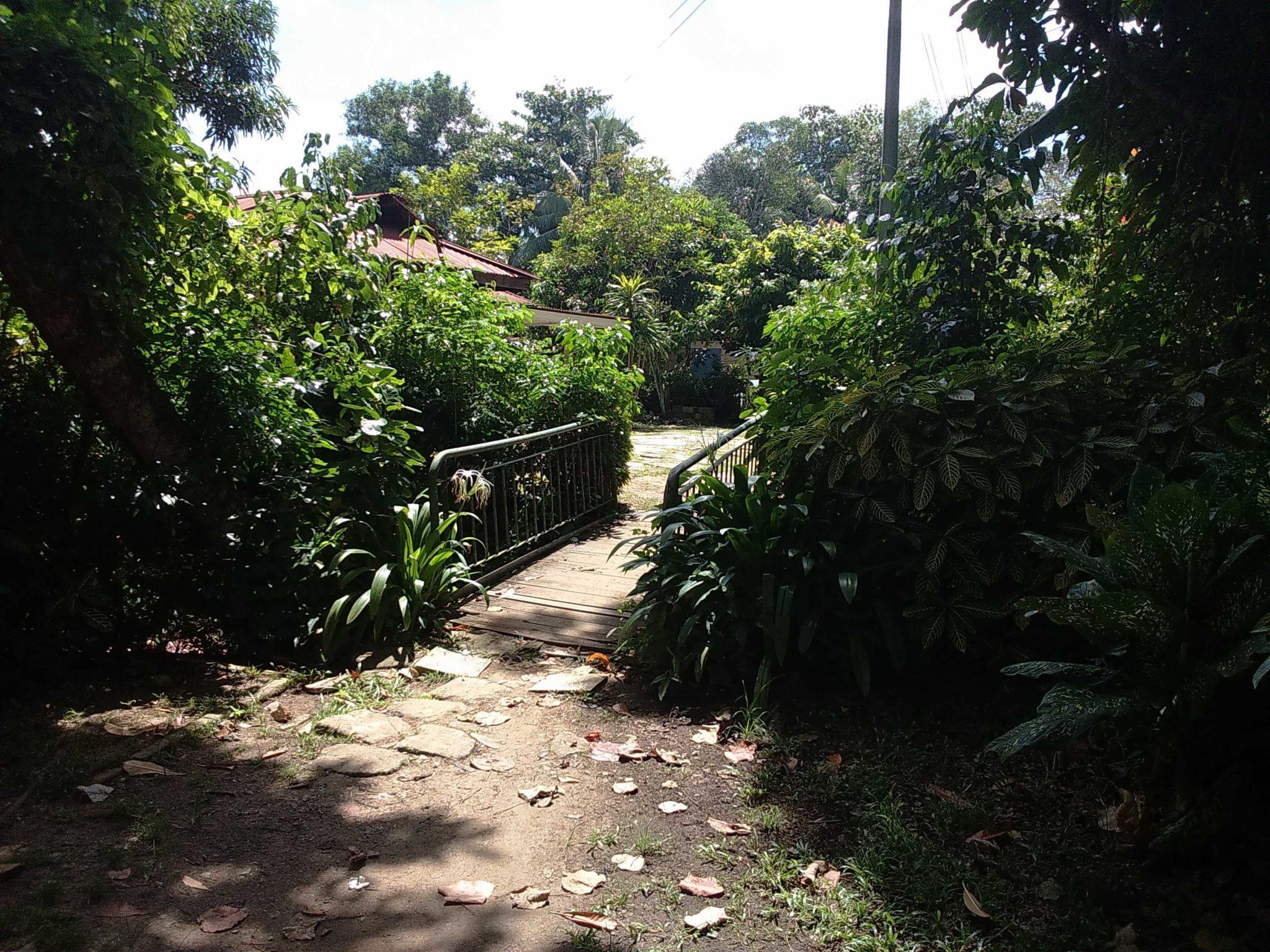 lorong buangkok 3