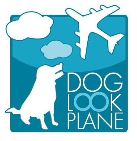 Doglookplane-Photographer