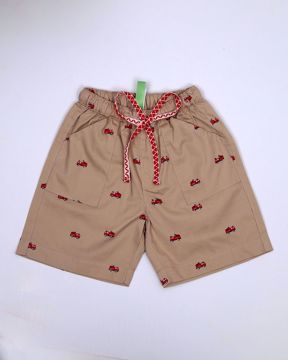 Picture of Boys Cars Shorts