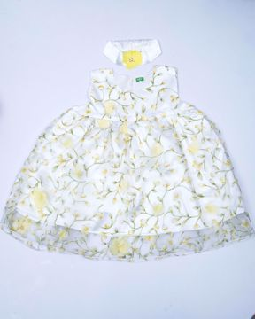 Picture of Newborn Girl's Party Gown