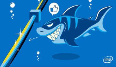 Cá mập cắn đứt cáp quang chuyện mới mà cũ