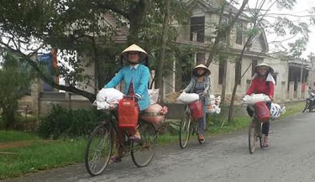 Kinh doanh buôn bán gạo lẻ online có lời lãi nhiều không?