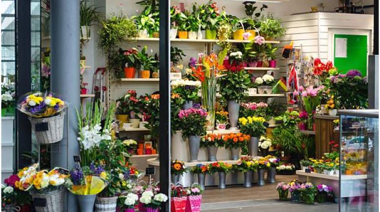 Mở shop hoa tươi chỉ với 20 triệu thu về cả chục triệu mỗi tháng