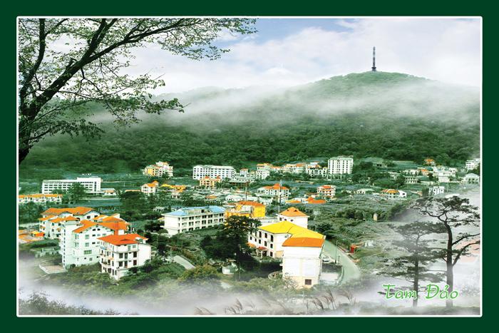 Thiết kế web Vĩnh Phúc - kênh marketing hiệu quả cho dịch vụ du lịch, nhà hàng, khách sạn