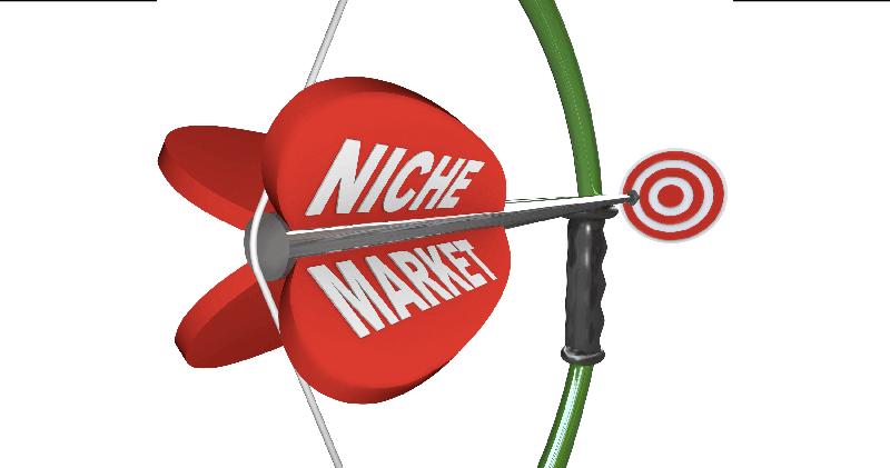 thị trường ngách