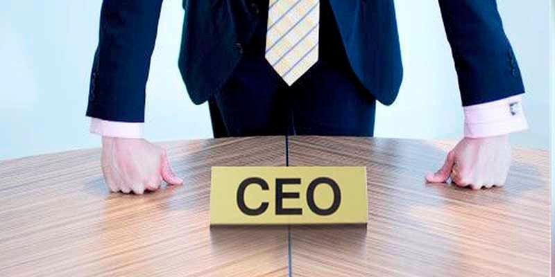 vai tro của CEO