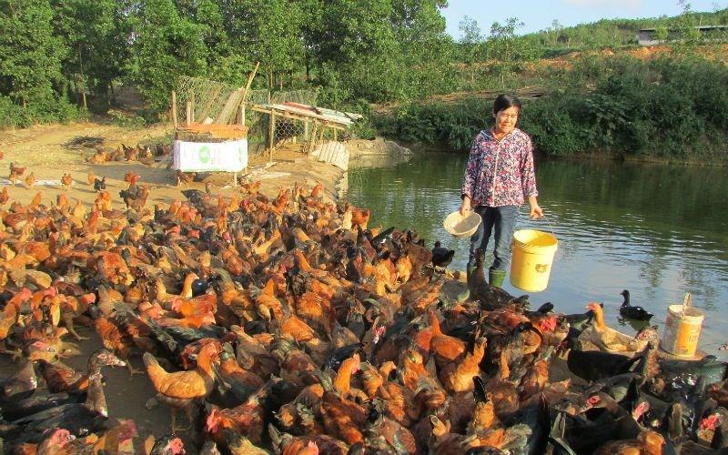 cách làm giàu ở nông thôn