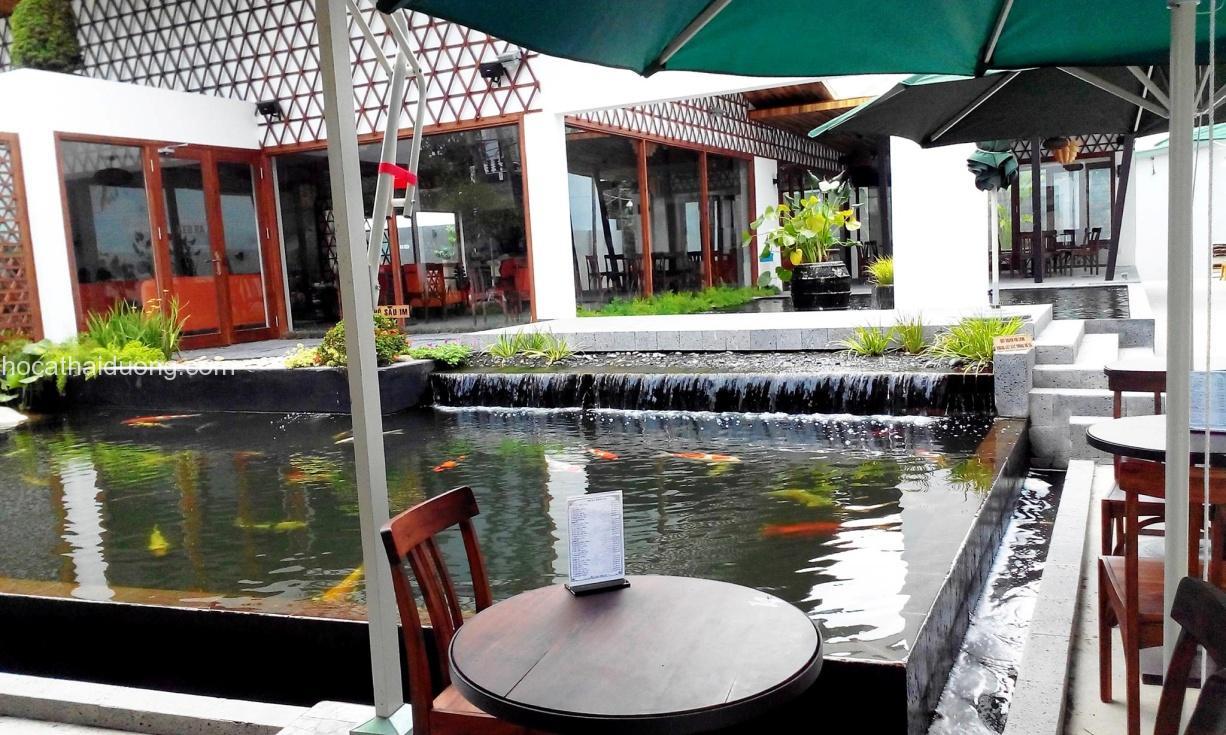 quán cafe cá Koi rộng lớn