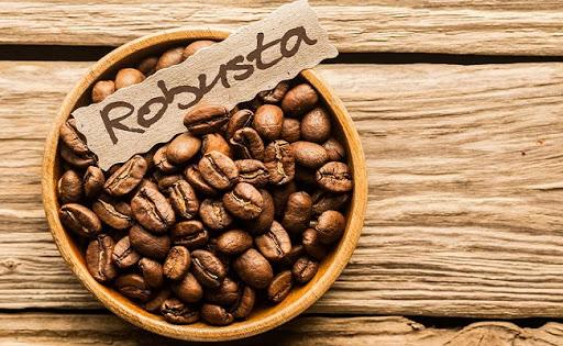 robusta là một trong các loại cà phê hấp dẫn
