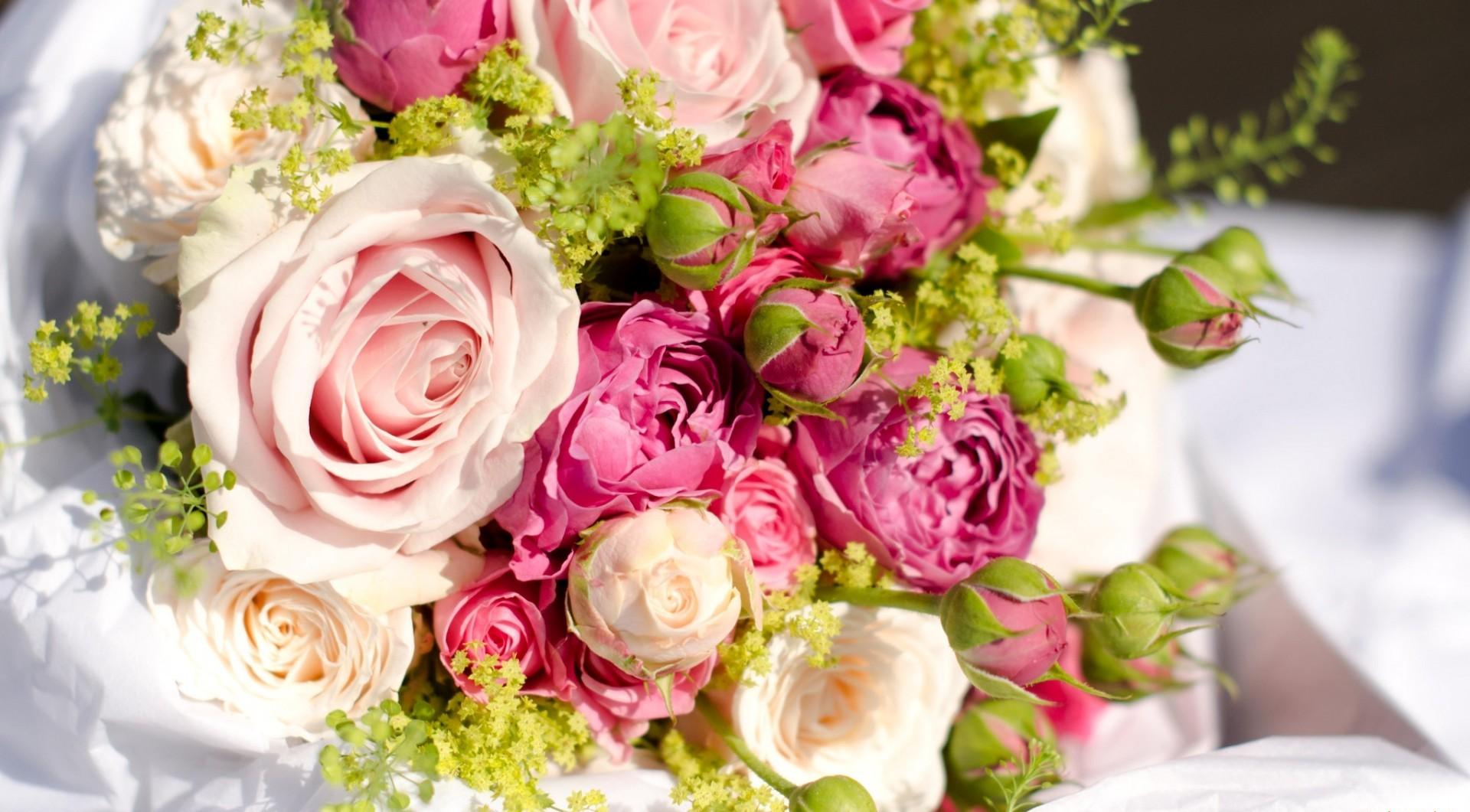 * Roses * Desktop Background