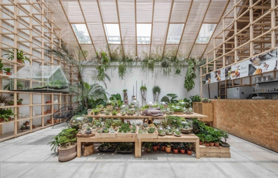quán cafe sử dụng cây xanh làm mới không gian