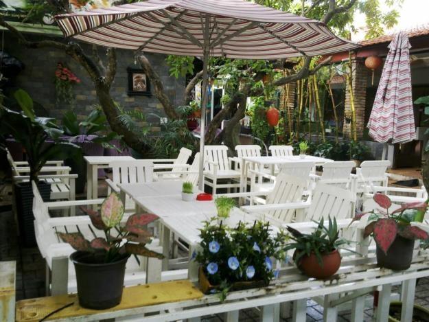 trang trí cây cảnh cho quán cafe