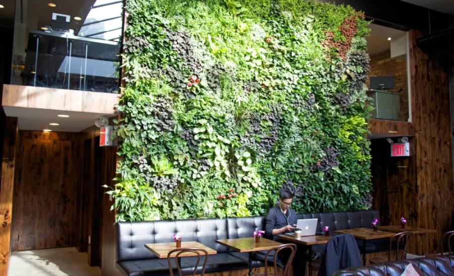 cây xanh tạo không gian thoáng mát, thoải mái cho quán cafe