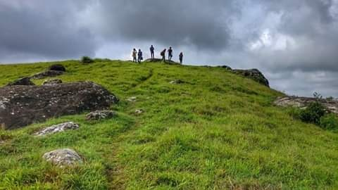 keralaforestecotourism.com,WINDY WALK AT VAGAVANAM
