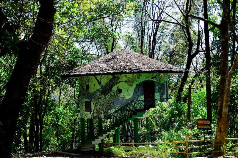 keralaforestecotourism.com,JUNGLE COTTAGE