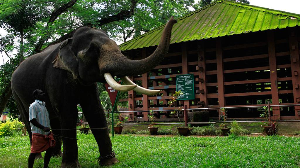 Welcome to Kerala Eco Tourism- Official Ecommerce Website of