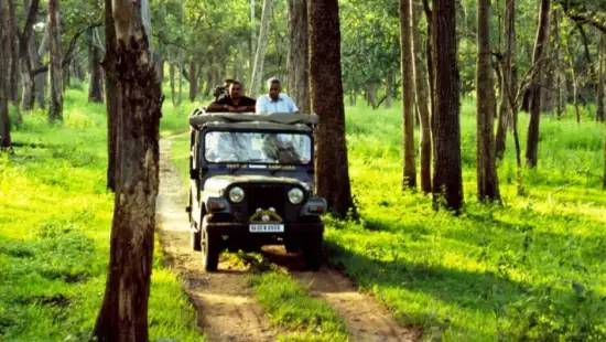 keralaforestecotourism.com,JEEP SAFARI AT 3PM