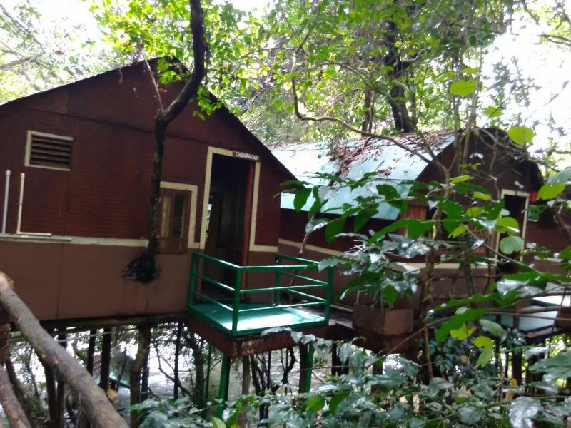 keralaforestecotourism.com,TREE TOP BAMBOO HUTS