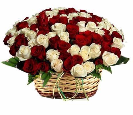 Red and White Rose Arrangement, Aditya Flowers, streetbell.com, www.streetbell.com