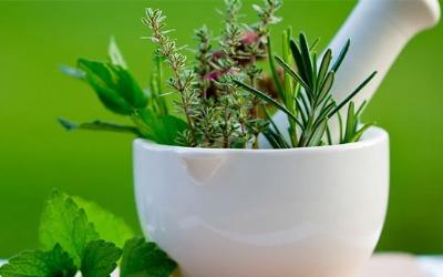 Gargi Herbal Products