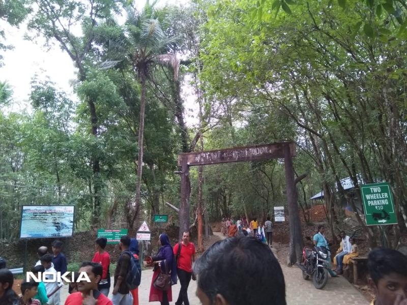 keralaforestecotourism.com,SITE SEEING