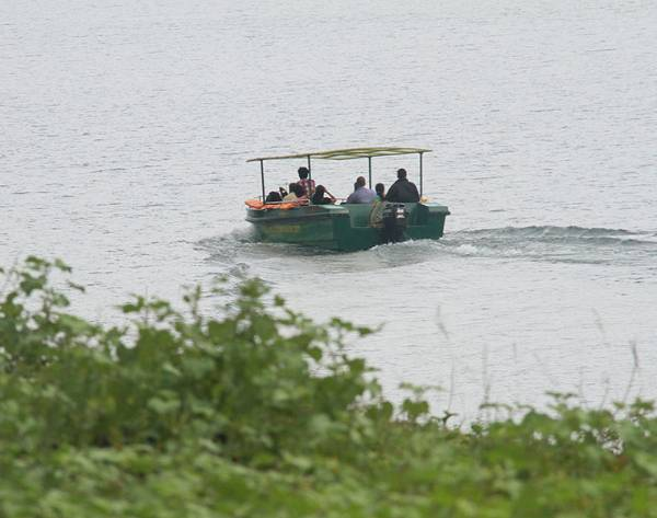 keralaforestecotourism.com,BOAT SAFARI DAWN N' DUSK SURFING (8 PERSON FOR 1 HOUR)