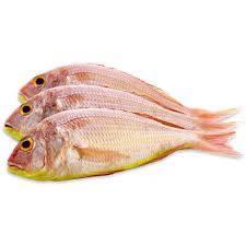 Navara, Achayan's Fish, streetbell.com, www.streetbell.com