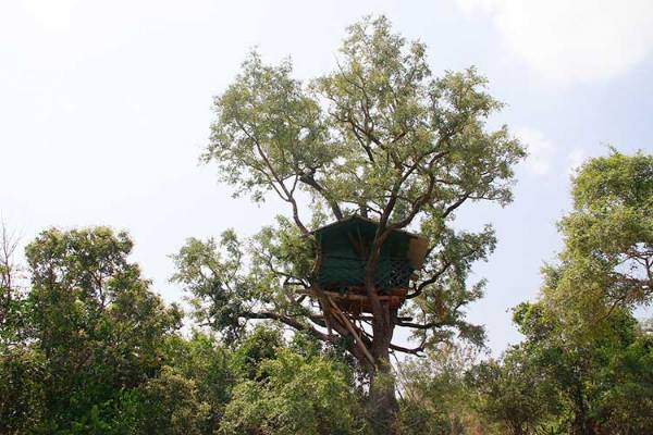 keralaforestecotourism.com,TREE HOUSE