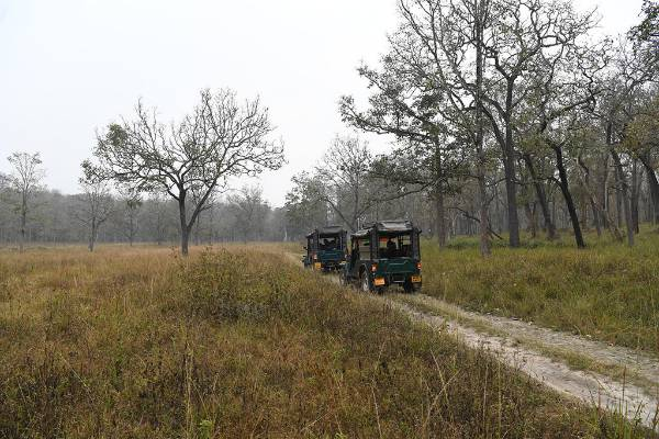 keralaforestecotourism.com,JEEP SAFARI AT 7AM TO 10AM