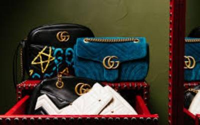 Bhadra Thejas Bags