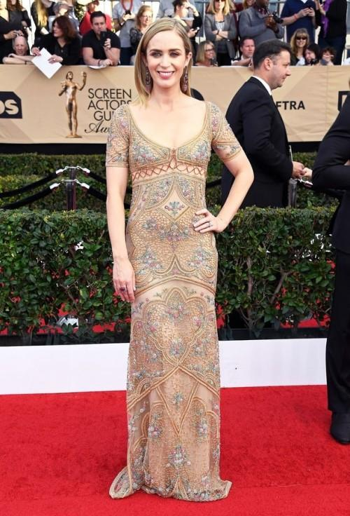 Emily Blunt gracefully carried thisRoberto Cavalli embroidered gown at the SAG Awards 2017. - SeenIt